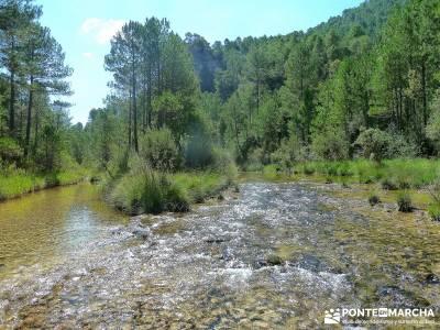 Hoz del Río Escabas - Serranía de Cuenca (Senderismo refrescante);sierra madrid rutas senderismo b